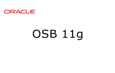 OSB 11g Training